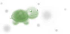P_wb_turtle2_g