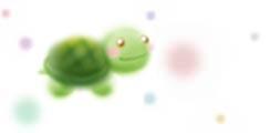 P_wb_turtle_c